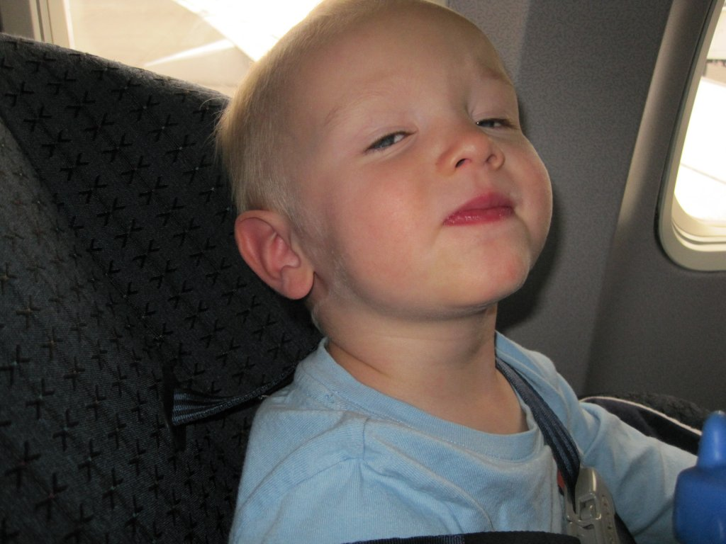 Makai on his 5th flight. He fell asleep on take off! Engines roaring and all.