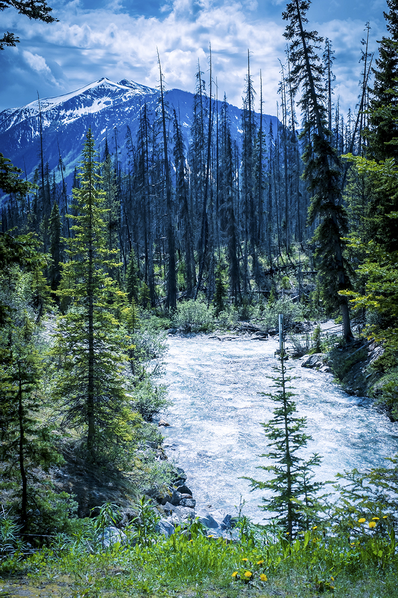 Marble Canyon Canadian Rockies