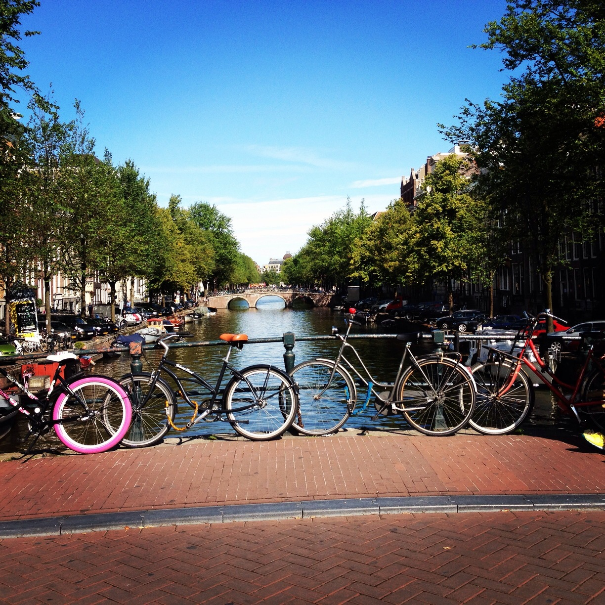 authentic travel experience in amsterdam