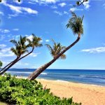 Hipmunk City Love: Access to Family Fun from Lahaina
