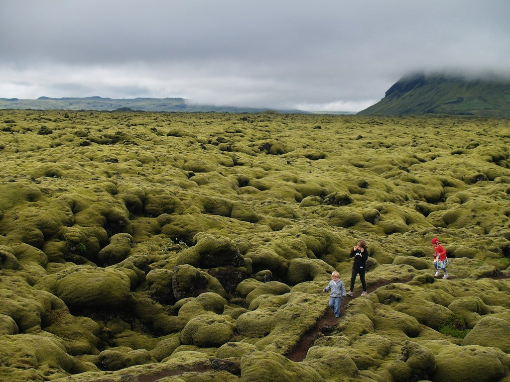 Best time to visit Iceland with kids