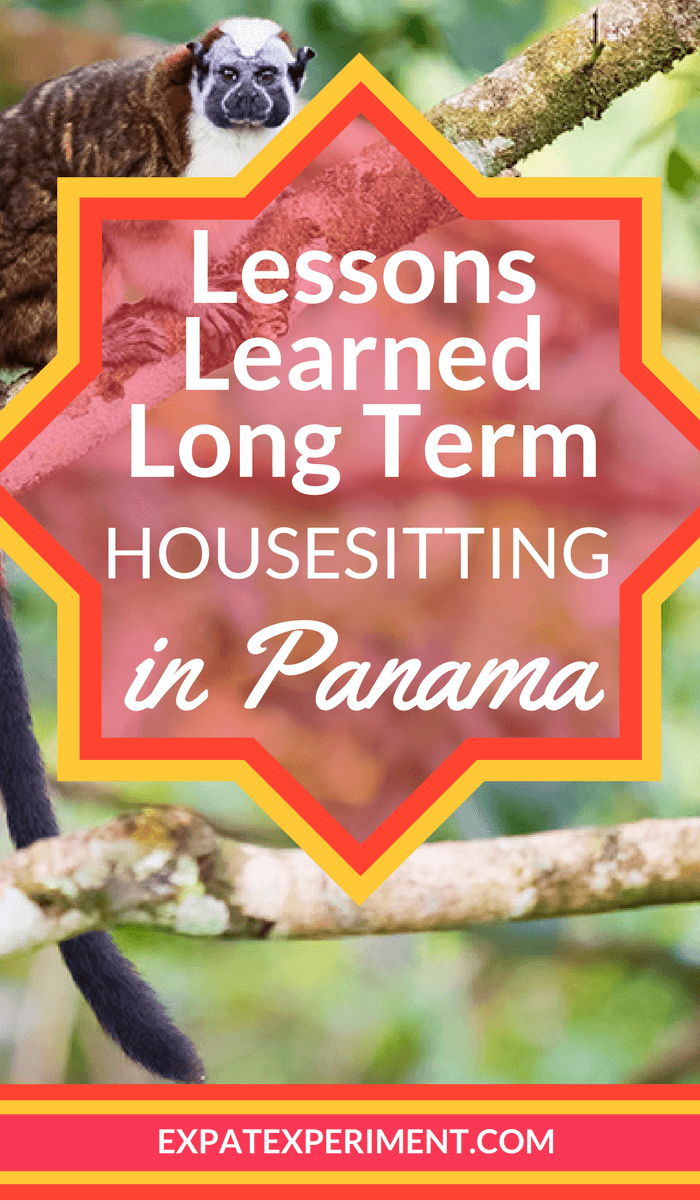 Long Term House Sitting Lessons Learned | The Expat Experiment