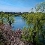 parks in bucharest