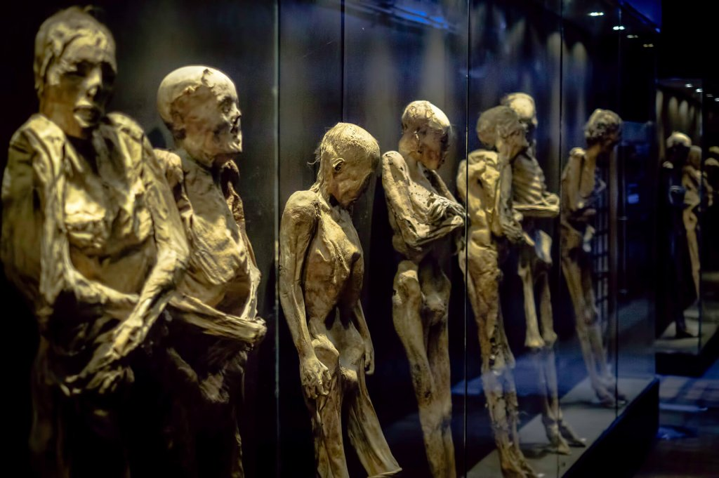 These are mummies at Museo de las Momias de Guanajauto- The Mummy Museum in Guanajuato