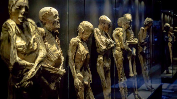Museo de las Momias de Guanajuato- Visiting the Dead in Guanajuato