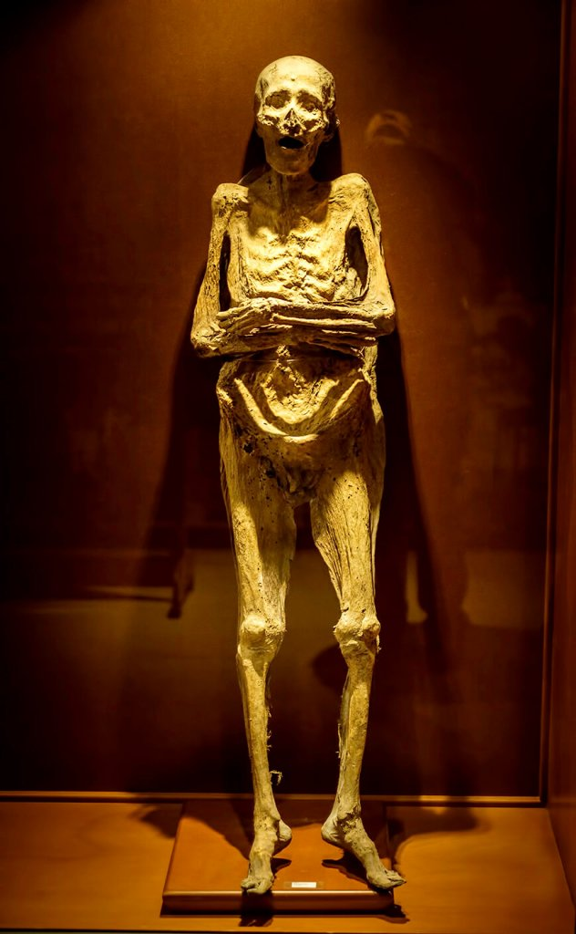 This is a mummy at Museo de las Momias de Guanajauto- The Mummy Museum in Guanajuato