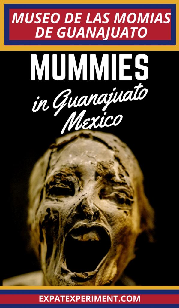 Mummy Museum Guanajuato- Expat Experiment 2 (1)