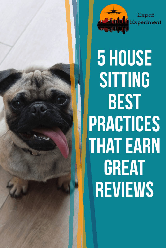 Image of a pug for a pin for 5 house sitting best practices